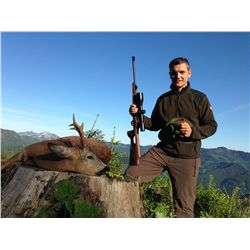 4-Day Roe Buck Hunt for One Hunter and One Non-Hunter in Austria - Includes Trophy Fee