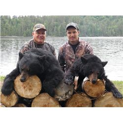 5-Day Black Bear Hunt and Unlimited Fishing Trip for One Hunter in Ontario
