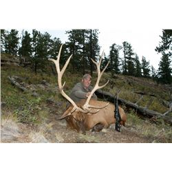 3-Day/4-Night Elk Hunt for One Hunter and One Non-Hunter in Colorado - Includes Trophy Fee