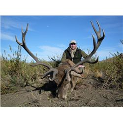 5-Day Big Game Hunt for One Hunter and One Non-Hunter in Argentina - Includes Trophy Fees