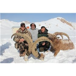 7-day Mid-Asian Ibex Hunt for One Hunter in Kyrgyz Republic - Includes Trophy Fee
