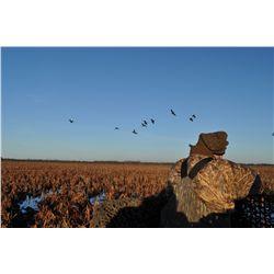 4-Night Mixed Bag Bird Hunt for Six Hunters in Uruguay