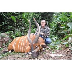 13-Day Bongo Hunt for One Hunter in Congo Brazzaville - Includes Trophy Fee