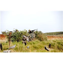 4-Day Wingshooting Adventure for Six Hunters In Uruguay