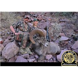 14-Day Desert Bighorn Hunt for One Hunter on Tiburon Island - Includes Trophy Fee