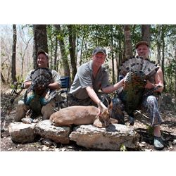 5-Day Campeche Jungle Hunt for One Hunter in Mexico - Includes Trophy Fees