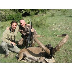 5-Day Gredos Ibex Hunt for One Hunter and One Observer in Spain - Includes Trophy Fee