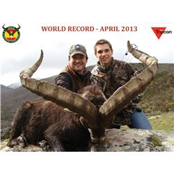 4-Day Beceite Ibex Hunt for One Hunter in Spain - Includes Trophy Fee