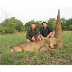 9-Day Lion Hunt for One Hunter in Cameroon