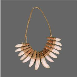 Native American Crocodile Tooth Necklace.   Comes with