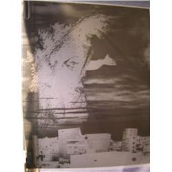 Godzilla Studio Made Photo Negative