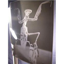 The Deadly Mantis  Negative