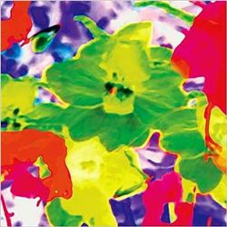 Olivier Kosovsky Art Print Fleurs Fluo