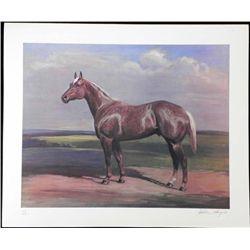 Helen Hayse Signed Art Print Brown Horse