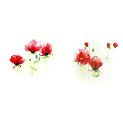 Andrea Fontana Red Poppies I and II Art Prints
