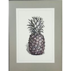Caroline Church Pineapple Still Life Art Print