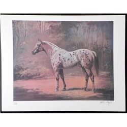 Helen Hayse Signed Art Print Gray Spotted Horse