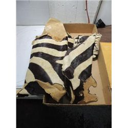 VINTAGE VERY OLD ZEBRA PELTS.