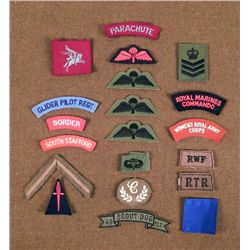 20 BRITISH MILITARY PATCHES-REG,, PARATROOPER,BORDER GD