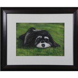 Barb Benstein Original Pastel Art Shih Tzu Dog -Framed