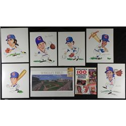 Chicago Cubs Wrigley Field Sports Heroes Memorabilia