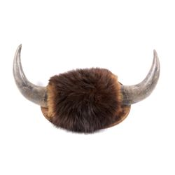 Great American Bison Buffalo Mount