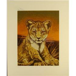 Marty Katon Signed Art Print Lion Cub Artist Proof
