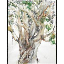 Betty Snyder Rees Original Painting Eucalyptus Tree