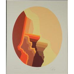 Doug Danz Signed Abstract Print Proof Canyon III