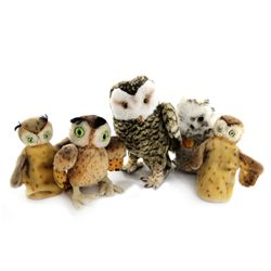 Collection of 5 Steiff Owls