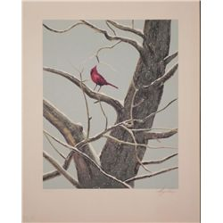 Wayne Cooper Signed Artist Proof Print Cardinal -Winter