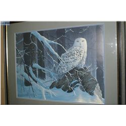 A limited edition framed print of a Snowy Owl 269/950 by Rod Triviger