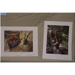 Two Small Un-Framed Ltd Edition Prints, Artist Seerey Lester, Red Fox Kit Study # 438/950 Arstist Si