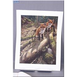 Medium Un-Framed Ltd Edition Print, Seerey Lester, Children of the Forest Red Fox Kits, # 669/950, A