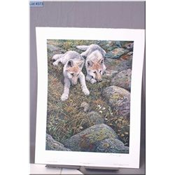 Medium Un-Framed Ltd Edition Print, Seerey Lester, Children of the Tundra - Arctic Wolf Cubs, # 669/