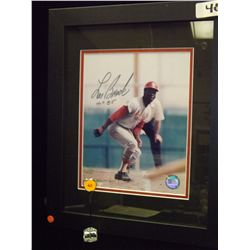 Lou Brock Autographed Photo.  8x10 Framed Color Photo.  Appraised or estimated retail value $350.  C