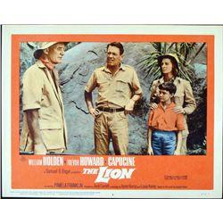 The Lion Original Lobby Card Movie Poster 1962