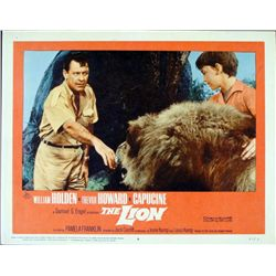 The Lion Original Lobby Card Wildlife Movie Poster 1962