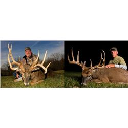 5-day Illinois Archery Northeastern White-Tailed Deer Hunt for One Hunter