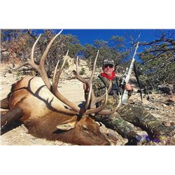 5-day New Mexico Archery or Muzzleloader Elk Hunt for One Hunter