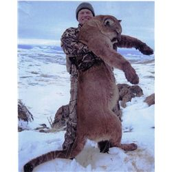 5-day Nevada Mountain Lion Hunt for One Hunter