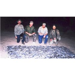 3-day Mexico Dove Hunt for Two Hunters and Two Observers