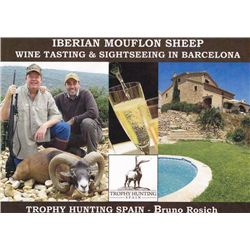 5-day Spain Iberian Mouflon Sheep Hunt for One Hunter and One Observer