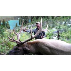 8-day British Columbia Rocky Mountain Elk Hunt for One Hunter