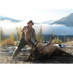 9-day British Columbia Rocky Mountain Elk Hunt for One Hunter