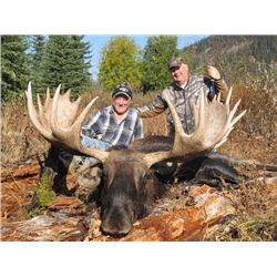 10-day British Columbia Moose Hunt for One Hunter