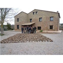 3-day Spain Red-Legged Partridge Hunt and Sightseeing for One Hunter and One Observer
