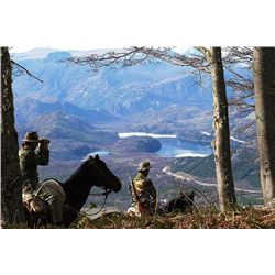 5-day Argentina Hybrid Sheep and Feral Goat Hunt for Two Hunters