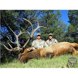 5-day New Mexico Rocky Mountain Elk Archery Hunt for One Hunter