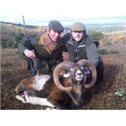5-day Trophy Fallow Deer or Mouflon Sheep Hunt for One Hunter and One Observer